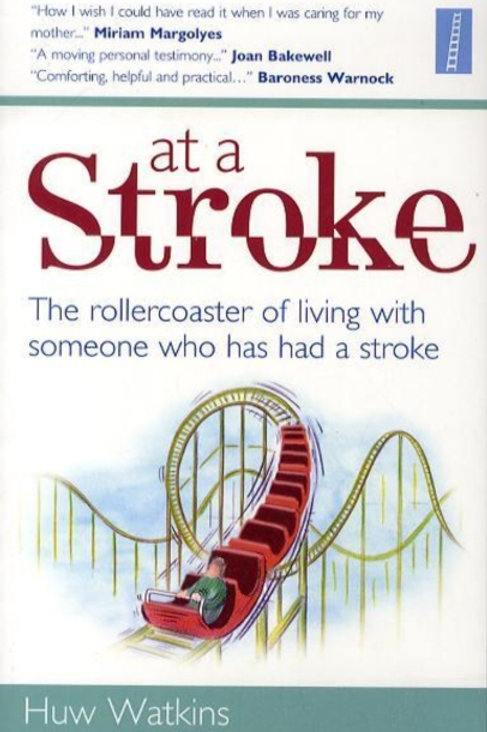 At a Stroke : The Rollercoaster of Living with Someone Who Has Had a Stroke