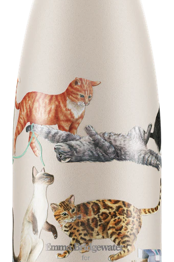 Emma Bridgewater Cat Chilly Bottle