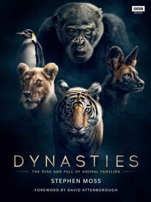 Dynasties : The Rise and Fall of Animal Families