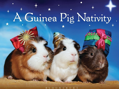 A Guinea Pig Nativity