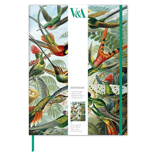 V&A Hummingbirds -Sketch Book