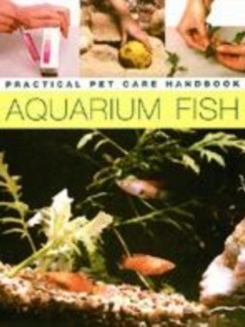 Complete Guide to Aquarium Fish Keeping