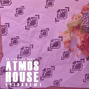 ATMOS house 1.jpg