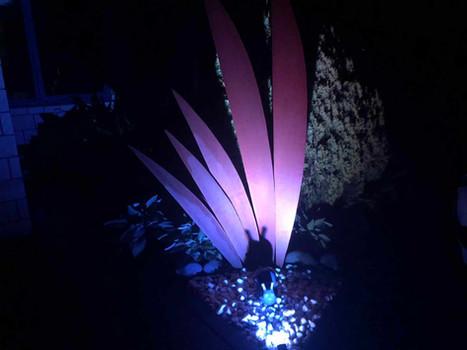 V leaf garden at night