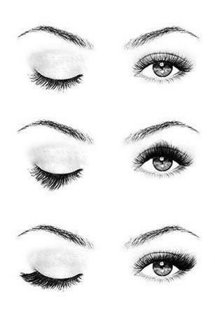 Types of false eyelashes.jpg