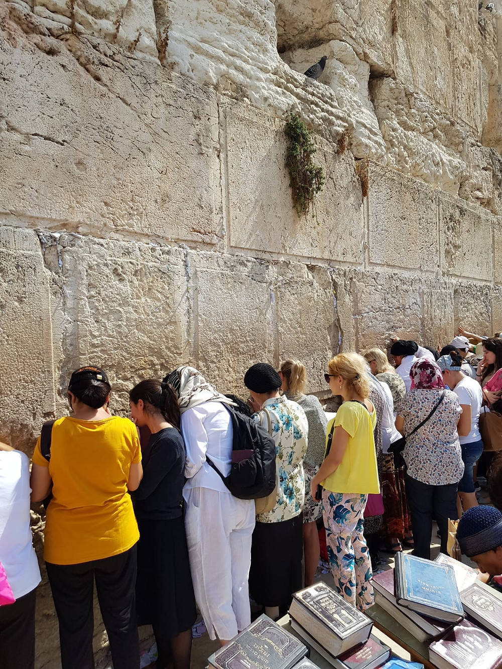 Short sleeves and pants are perfectly appropriate at the Western Wall. Whether you cover your head or not is completely up to you.