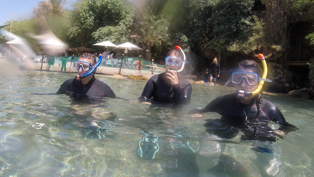 My girls getting ready to snorkel with dolphins