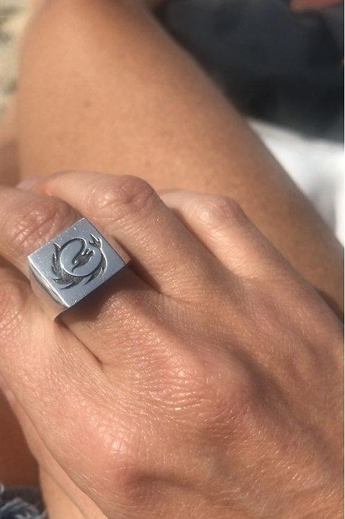 טבעת דרוגון