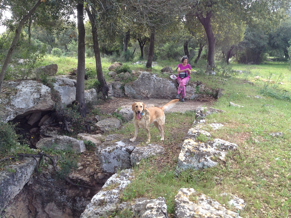 Linda and Na'ala wait for me at the newly discovered ancient wine press. The site is dated to Roman and Byzantine times (1st to 6th centuries c.e.)