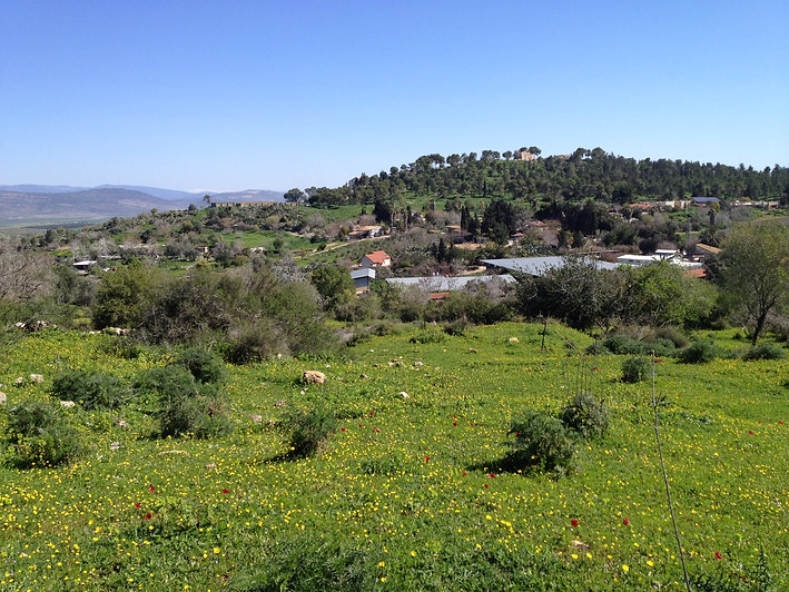 Musings of an Israel Tour Guide