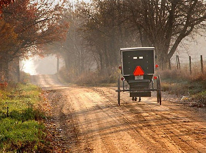 buggy on dirt road fall.jpg