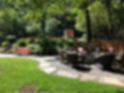 PHOTO-2019-07-15-08-42-33_1.jpg
