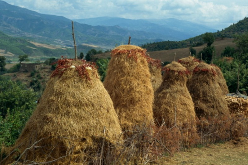hay Albania tourism
