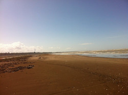 Beach Divjaka