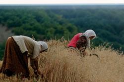 farmers Albania tourism