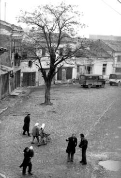 Korca Market