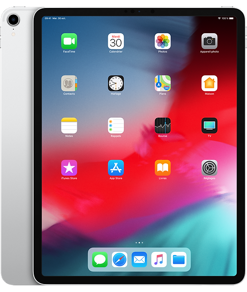iPad Pro 12,9 Pouces 1 To Wifi + Cellular