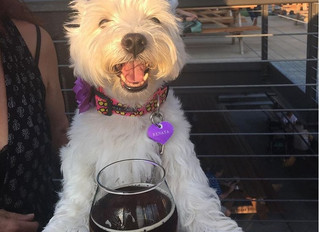 Nugget's in on the Durham brew scene, too!