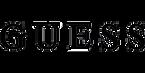 Logo_Guess.png