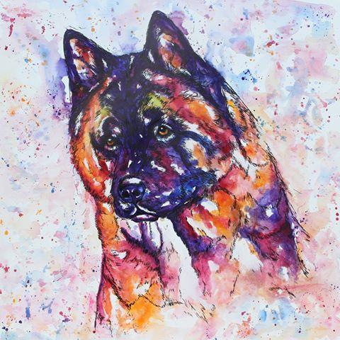 Bright watercolour dog portrait using reds, oranges, blues and purples