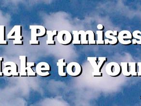 14 Promises