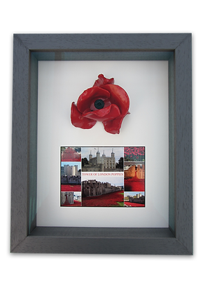 Framed tower poppy