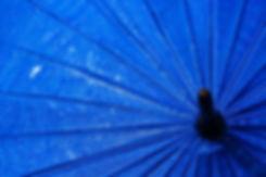 Umbrellas-509540990_2125x1416_LR.jpg