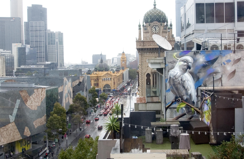 Melbourne_Cockatoo_Streetart_Bird_City_Graffitikunst_AndreasWelin_Welin