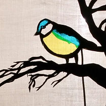 """""""THE BLUE TIT"""" SHADOW PLAY"""