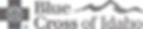 BCI-Logo-CMYK_viewing (1).png