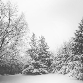 Winter Seasons - patience for difficult times
