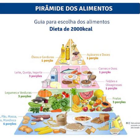 De onde vem a pirâmide nutricional? Pra que serve? É brasileira? Hoje, no LEMAreporter.