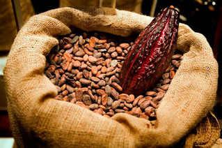 Produção de chocolate - parte 2