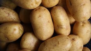 Ao Vencedor, as Batatas!
