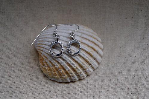 Mini Limpet Drop Earrings