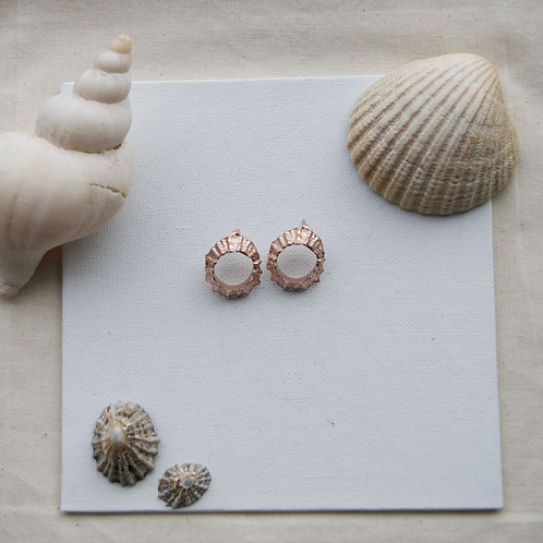 Limpet Studs