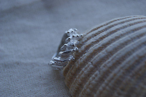 Carved Shell Ring