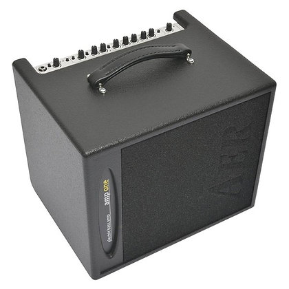 AER Amp One - 200W Bass Combo Amp