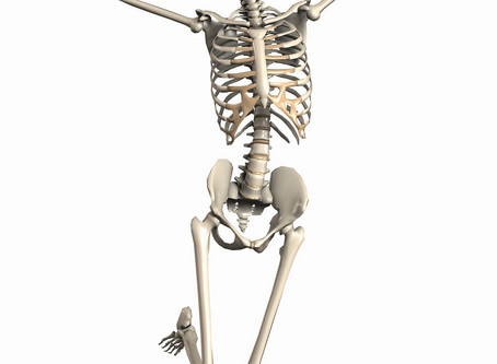 Bone health - Calcium or Magnesium?