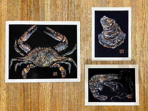 Crab, Shrimp, & Oyster Reproduction