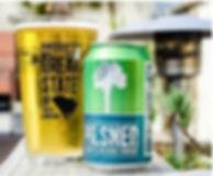 Craft beer_edited.jpg