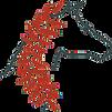 RFCtrailsparklogoweb_edited_edited_edite