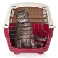 My Cat Does Not Like Being in a Carrier and Howls in the Car on the Way to the Vet.  I Prefer to Jus