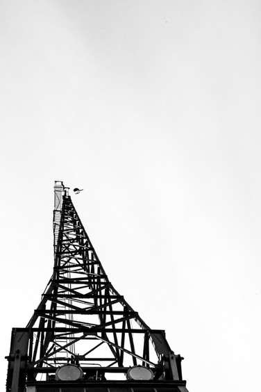 Bristol Crane