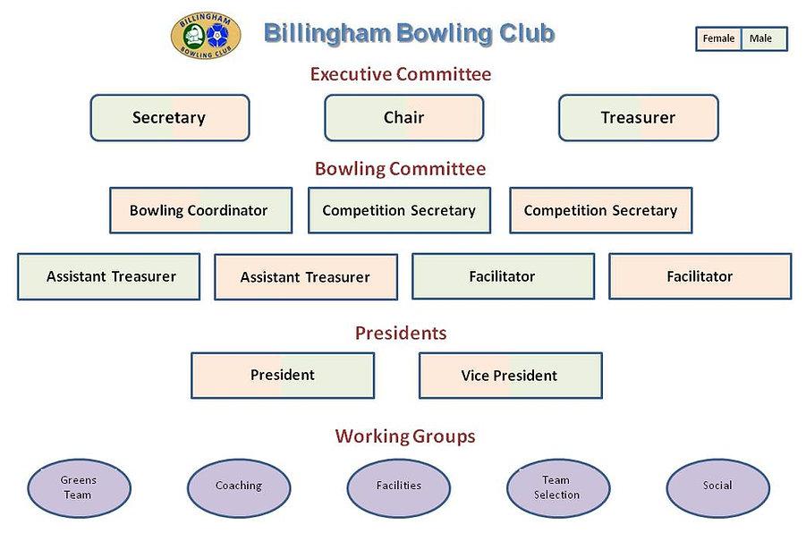 Billingham Bowling Club Structure 1.jpg