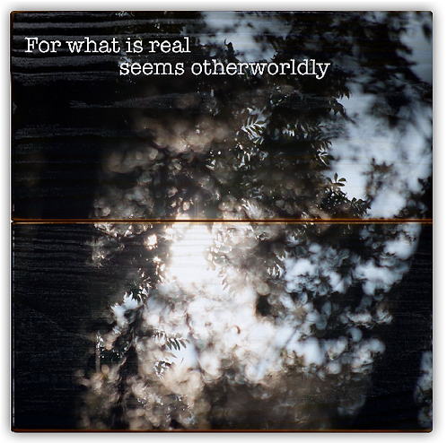 """For what is real seems otherworldly"""