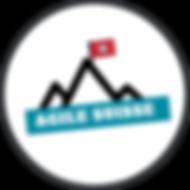 Agile Suisse Logo