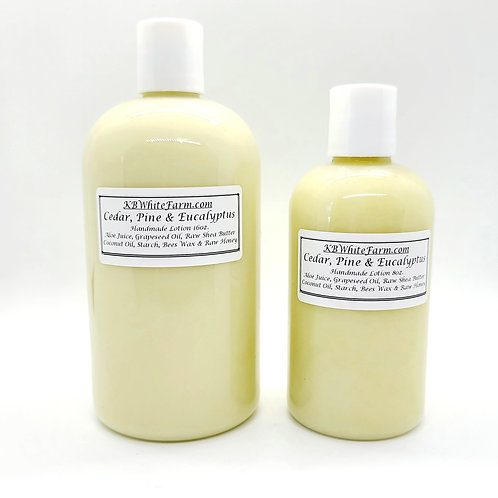 Cedar,  Pine and Eucalyptus Lotion Small 8oz.