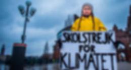 CM Greta Thunberg campaigning.jpeg