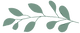 logo-fromnature-witachter_edited_edited.